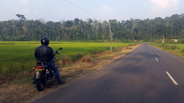 Riding through rice fields - What to do in Coorg