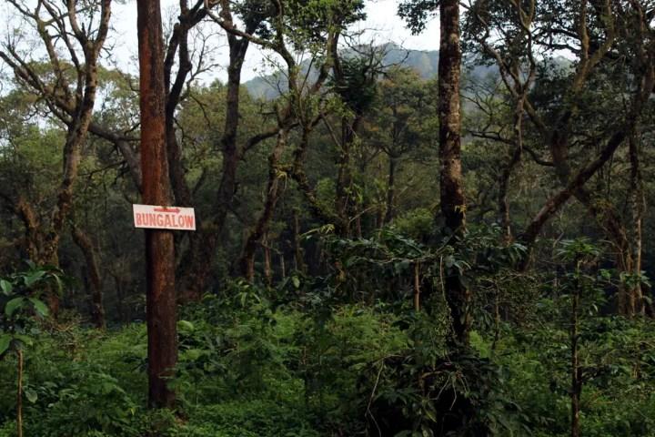 Depot estate Signboard - Madikeri