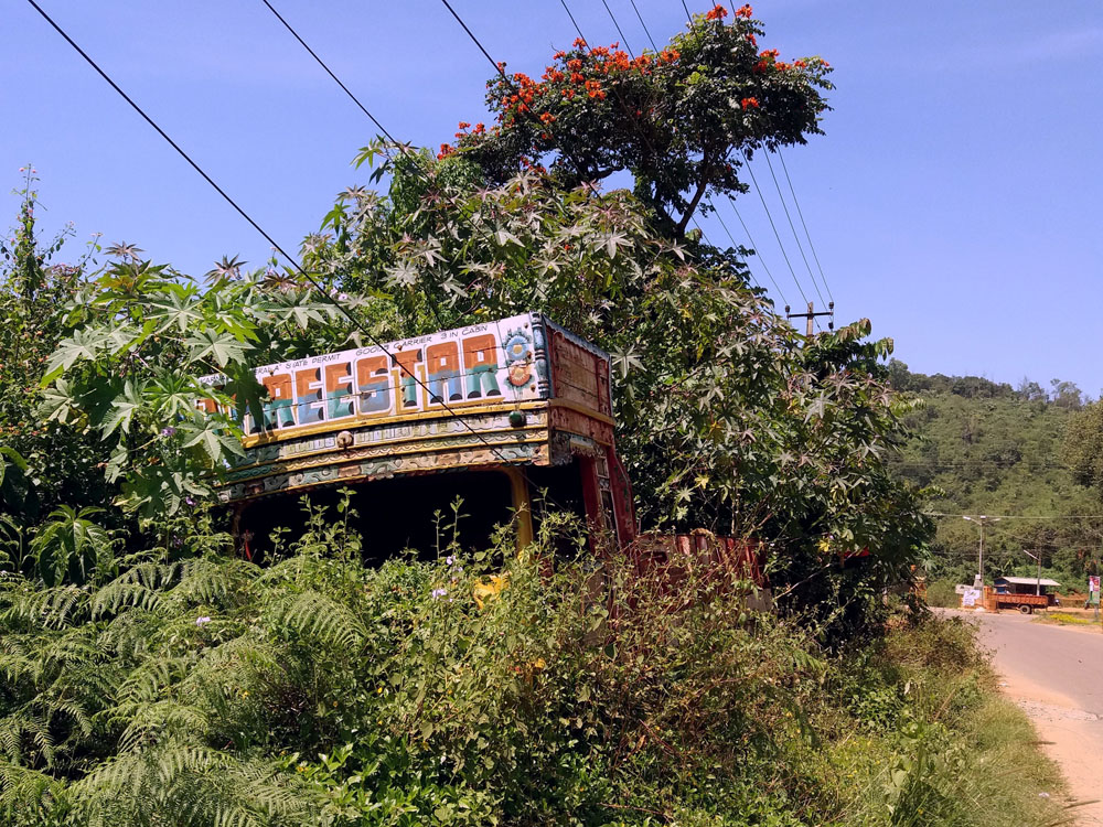 Truck in the bushes - Coorg travel guide