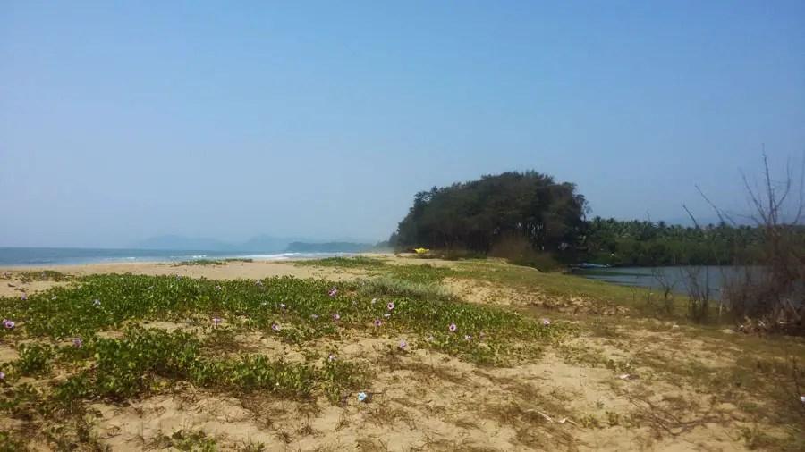 Agonda - nearby beaches -Galgibaga sandbar