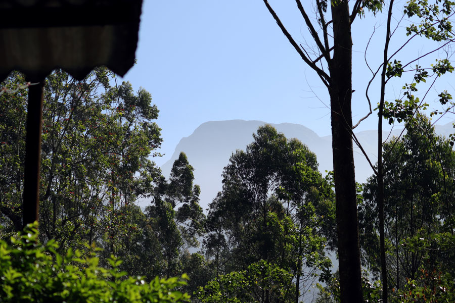 Valparai - Mountain from basecamp - In the shadow of elephants in Valparai