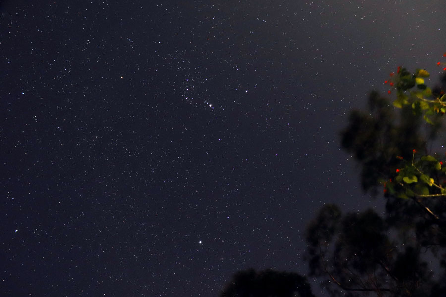 Night sky showing Orion and Sirius in Valparai, Tamil Nadu, India - winter holiday destination