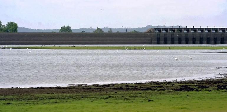 Pocharam dam, Medak, Telangana, India