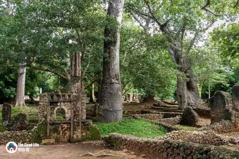 Foundations - Gedi ruins, Malindi