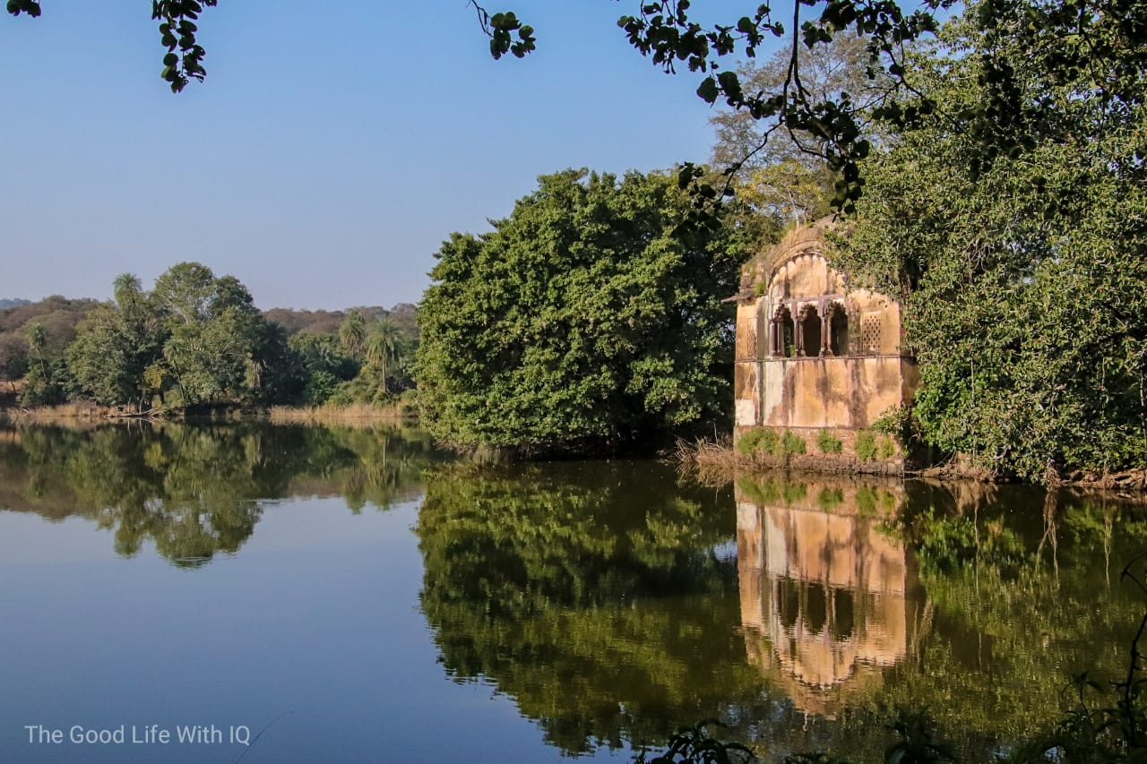 Hunting lodge, Ranthambhore