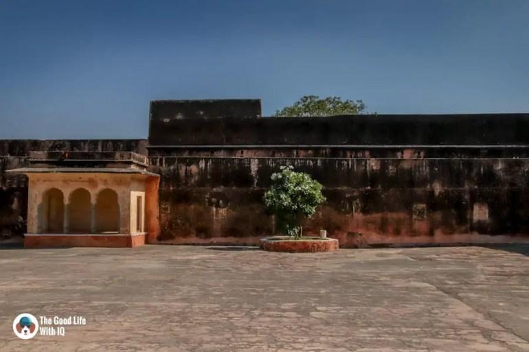 Pavilion and tree, Jaipur