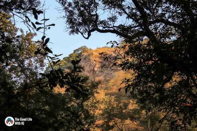 Sunlit hills - Ranthambhore safari