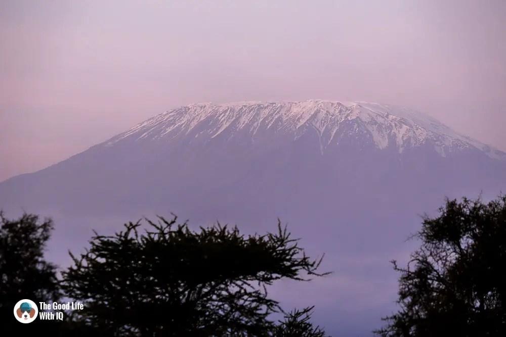 Kenya safari - Amboseli - Kilimanjaro close-up