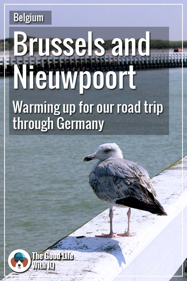 Pin thumbnail - Brussels and Nieuwpoort