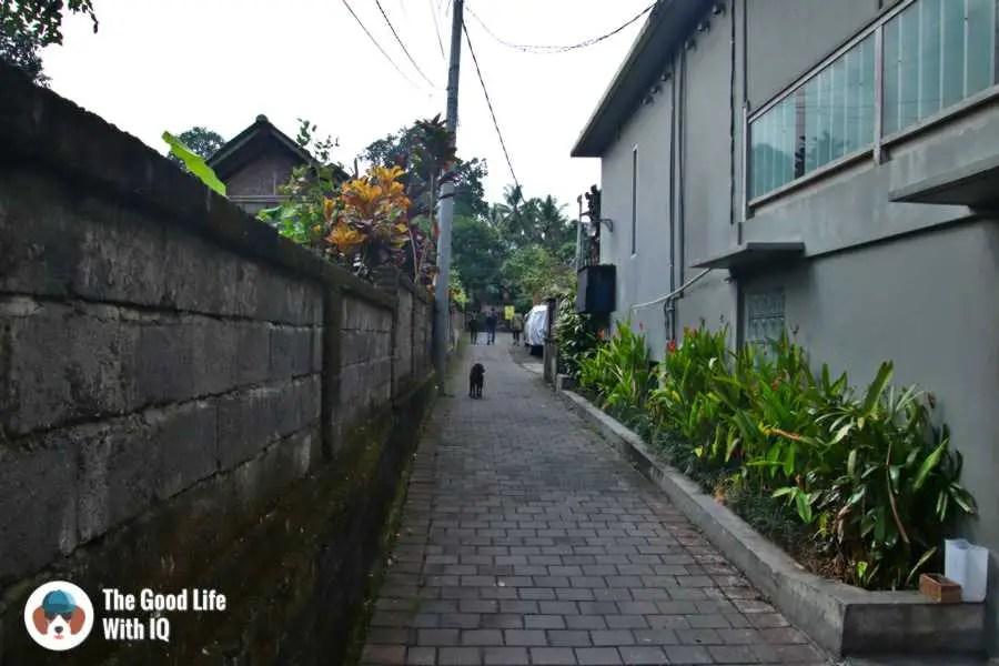 Alley - 3 days in Ubud, Bali