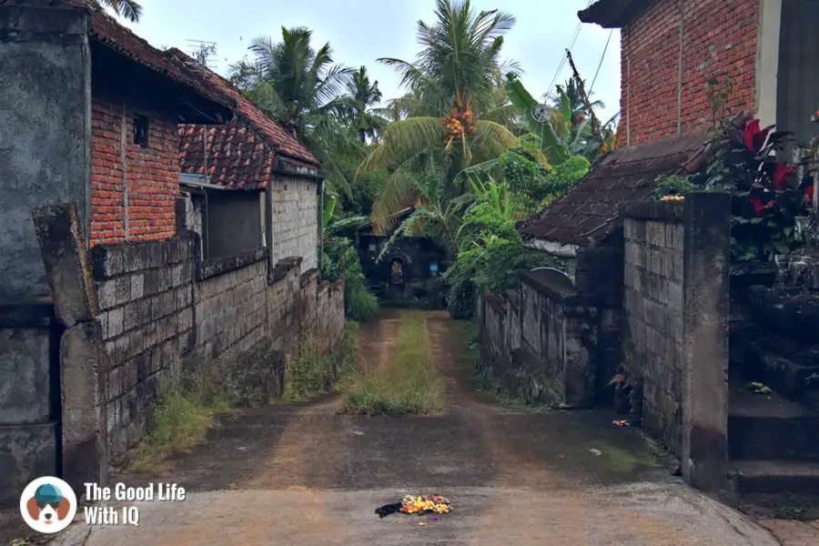 Driveway - Three days in Ubud, Bali