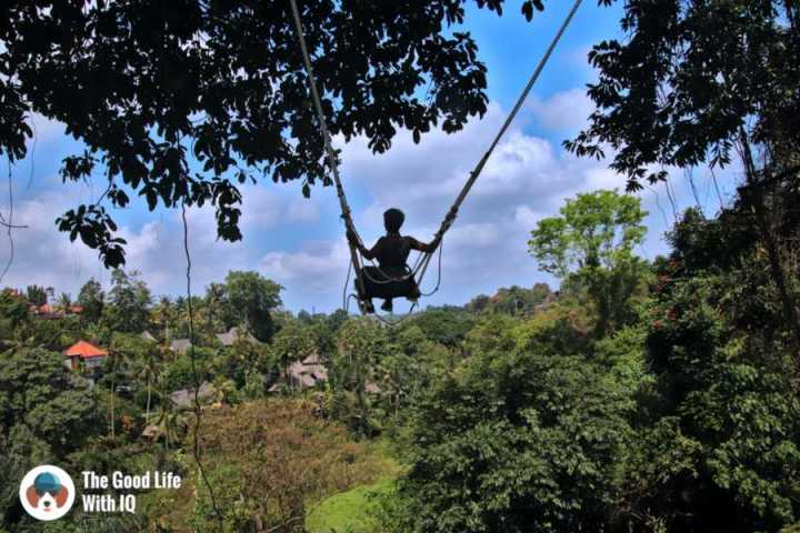 Swing - Campuhan, Ubud, Bali