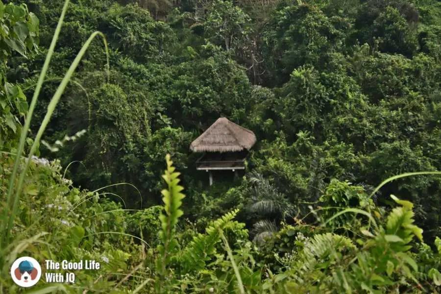 Pavilion, Campuhan trail - Bali, Ubud