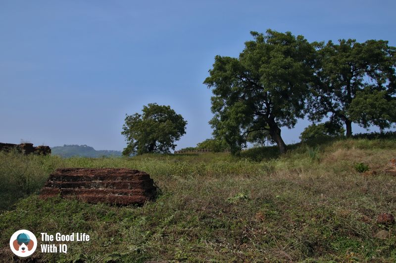 Tombstone - Bidar