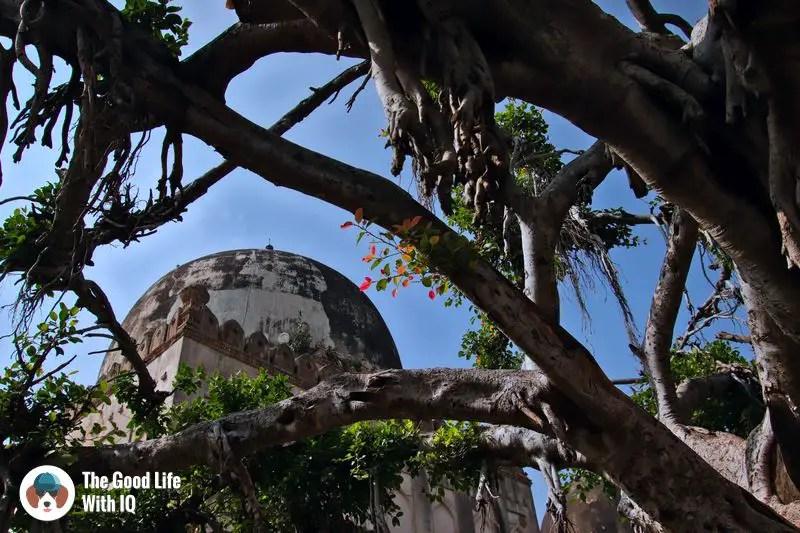 tomb - bidar