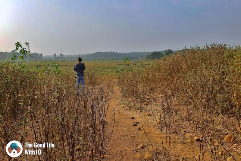 lake bed - Hyderabad to Bidar road trip