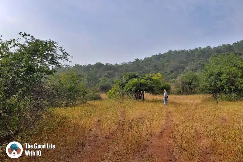 Reserve forest - bidar