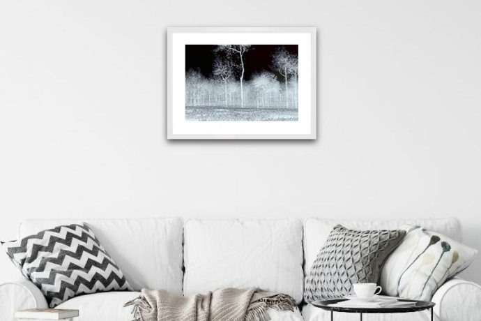 Inverted black and white image of a tea plantation in the western ghats, india