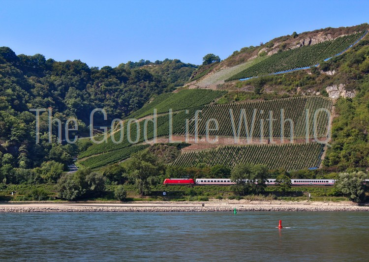 Train running along the river Rhine in Germany