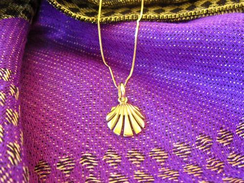 Camino scallop shell symbol