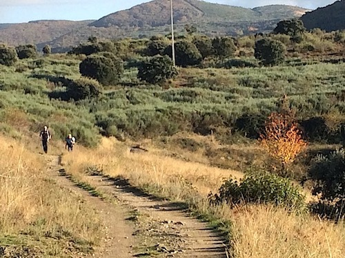 Camino travellers