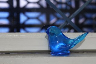 Grandma's bluebird made the migration with us as a reminder of the ones we love back on the prairie.