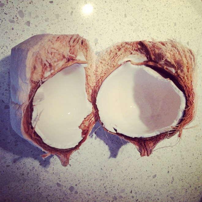 Cracked Young Coconut