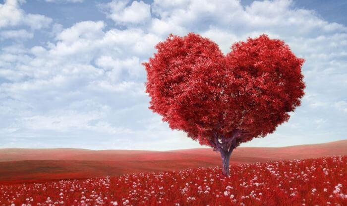 Contoh Puisi Cinta Sejati