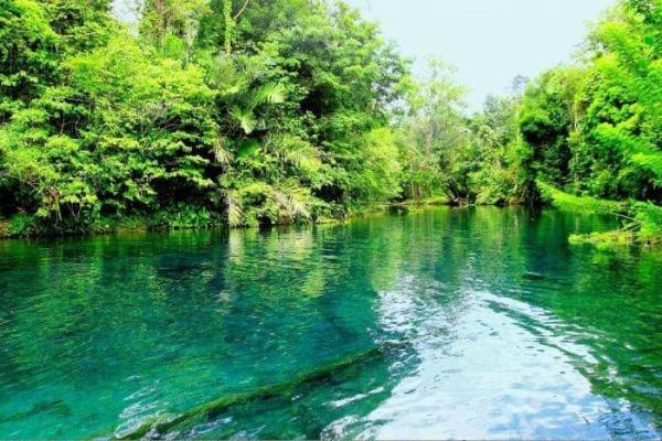 Pengertian Ekosistem