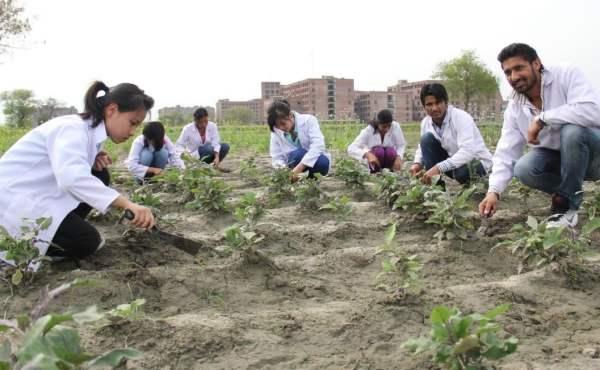 Jurusan Kuliah Pertanian