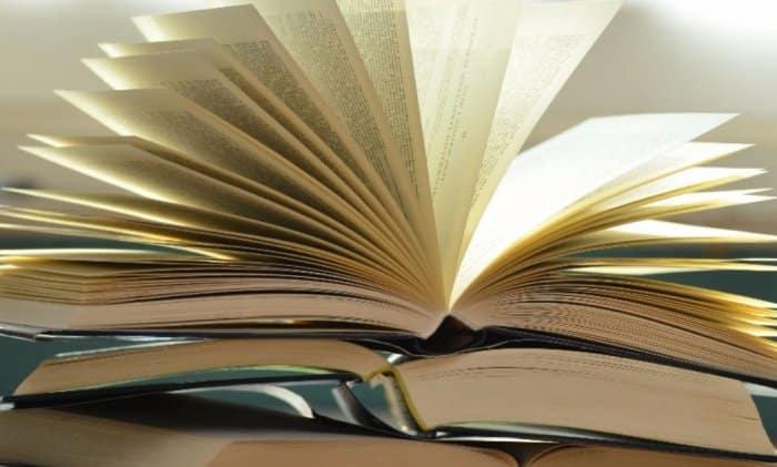 Unsur Intrinsik Dan Ekstrinsik Cerpen Novel Puisi Drama