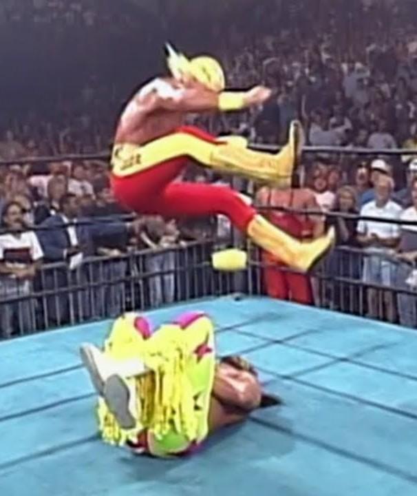 Hogan Heel Turn
