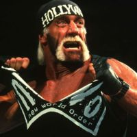 A LOOK BACK AT HOLLYWOOD HOGAN & THE NWO