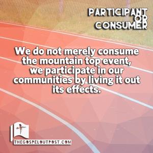 Participant or Consumer