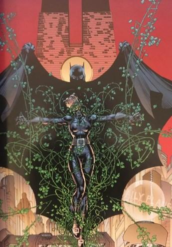 Batman Catwoman Vs Ivy