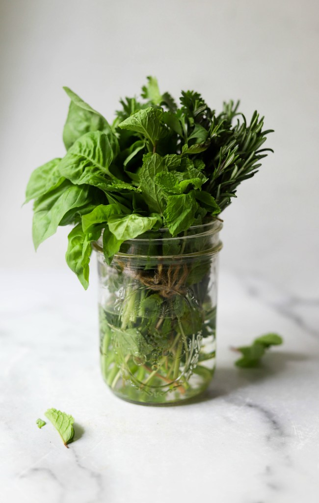 Jar of fresh herbs in water as an idea for creative ways to reduce waste in the kitchen by using up herbs.