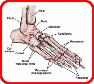 What Does Foot Health Have To Do With Gout?