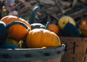 Amazing Thanksgiving Outreach Ideas to Try Right Now