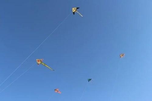kite, fly
