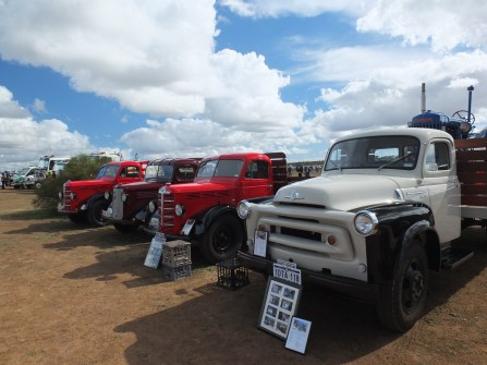 Beautiful old Bedfords the like at the Valley View Airshow.