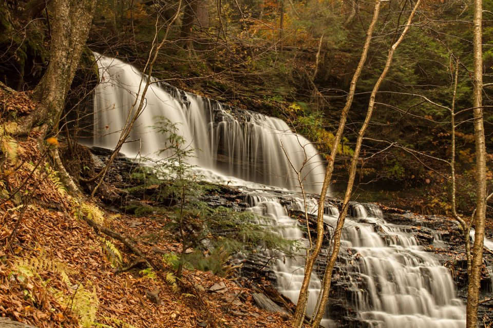 Mohawk Falls at Ricketts Glen State Park