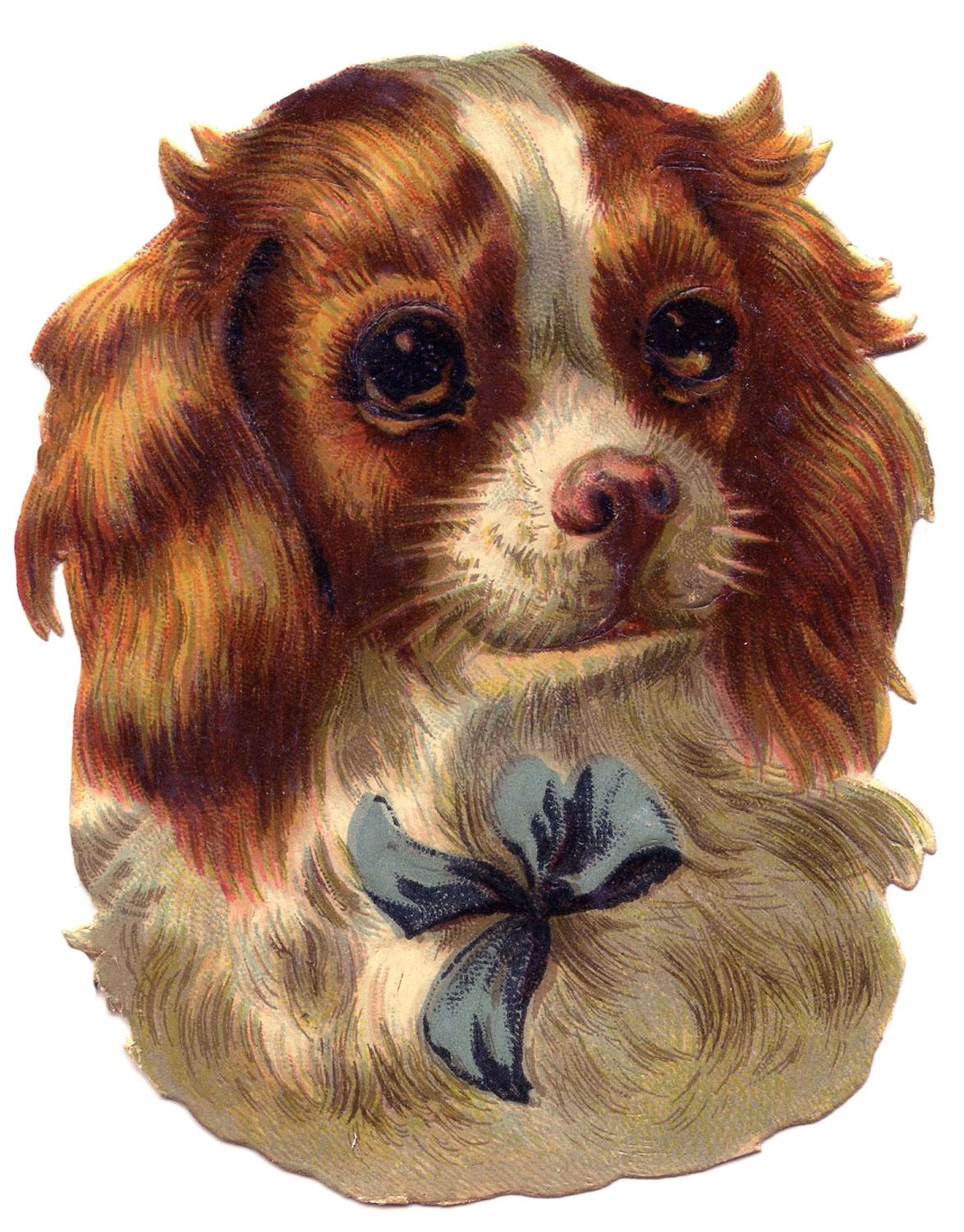 Vintage Image Cute Dog Spaniel The Graphics Fairy