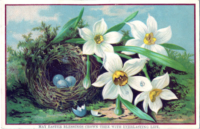 Royalty Free Easter Image Nest With Eggs Daffodils