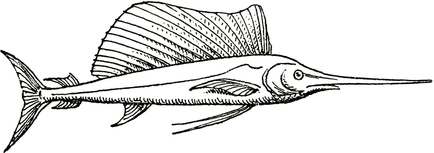 vintage swordfish image the graphics fairy
