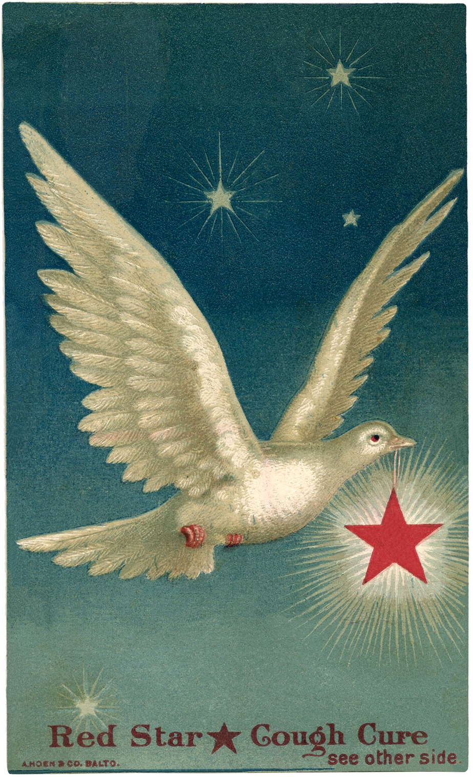 Beautiful Dove With Star Images The Graphics Fairy