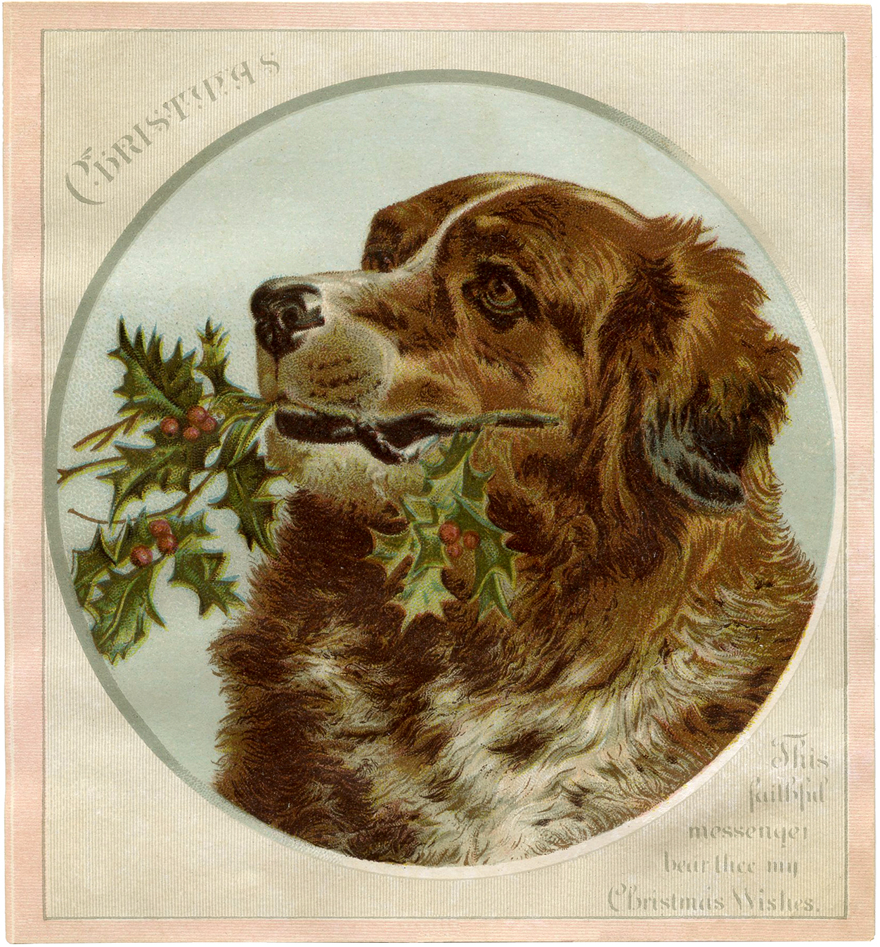 Lovely Christmas Dog Image The Graphics Fairy