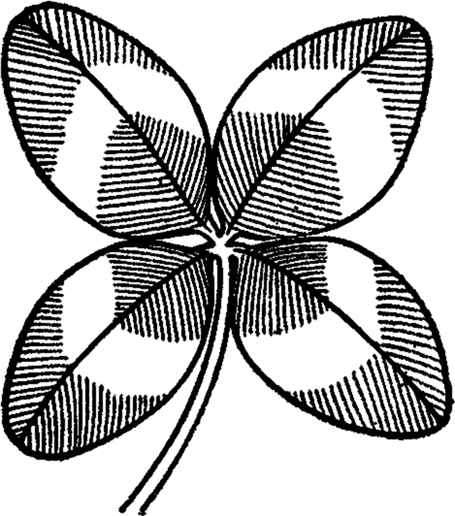 Vintage Four Leaf Clover Image