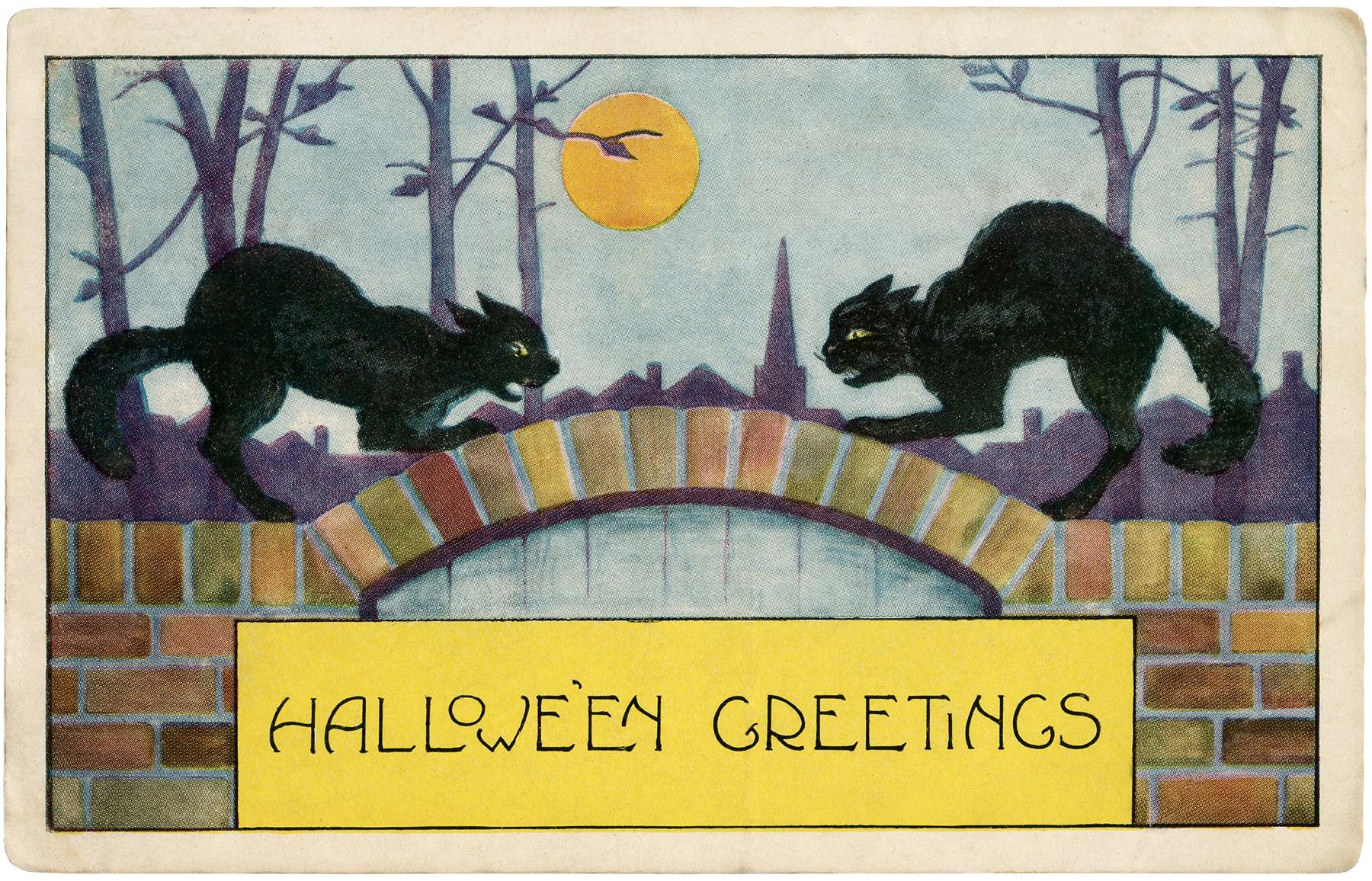 Free Halloween Black Cats Image The Graphics Fairy