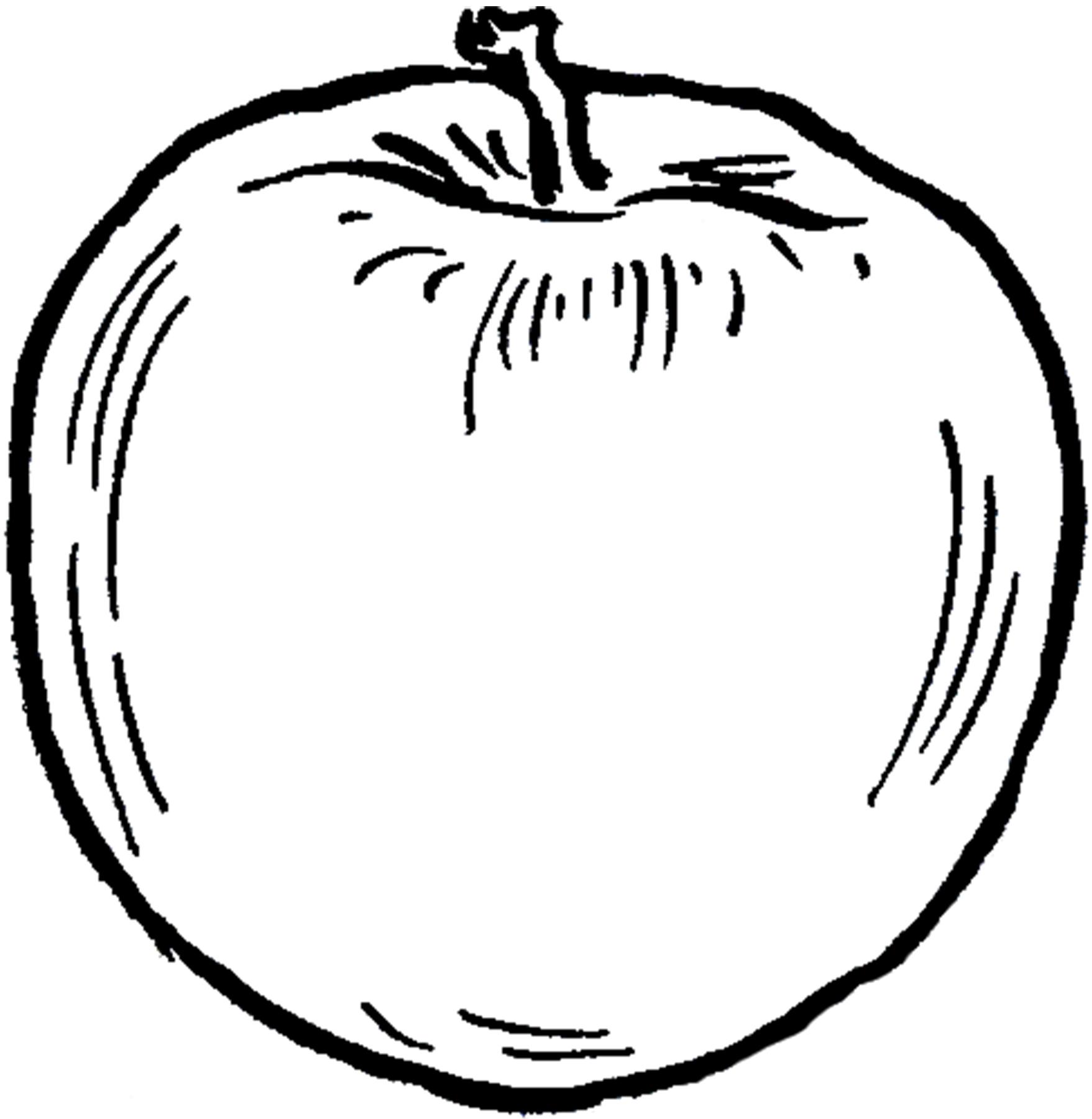 7 Apple Images Clip Art