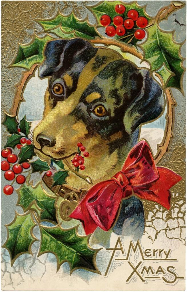 Vintage Christmas Dog Freebie Cute The Graphics Fairy